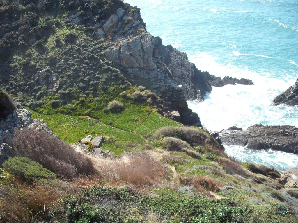 Cliff top trail